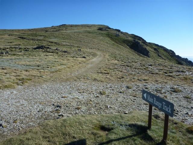 Main Range Track north of Carruthers Creek